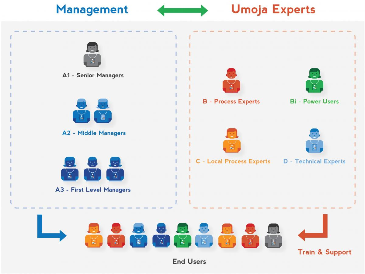 how to become a process expert